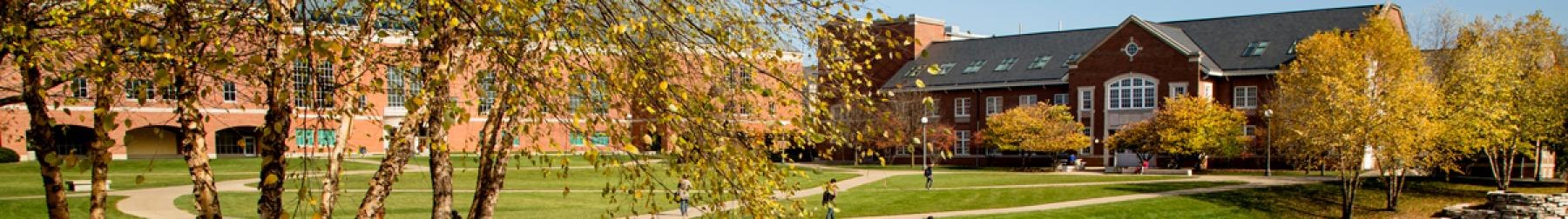 Bardeen Engineering Quad during a beautiful fall day