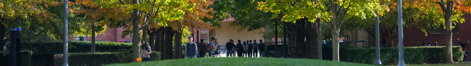 Students milling about in front of the Grainger Engineering Library